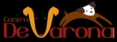 De Varona Professional Dog Trainers Academy